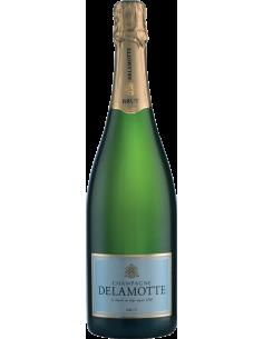 Champagne Blanc de Blancs - Champagne Brut (750 ml.) - Delamotte - Delamotte - 1