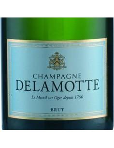 Champagne Blanc de Blancs - Champagne Brut (750 ml.) - Delamotte - Delamotte - 2