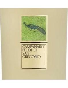 Vini Bianchi - Irpinia Bianco DOC 'Campanaro' 2015 (750 ml.) - Feudi di San Gregorio - Feudi di San Gregorio - 2