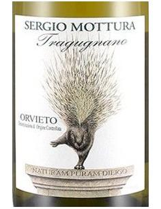 Vini Bianchi - Orvieto DOC 'Tragugnano' 2016 (750 ml.) - Sergio Mottura - Sergio Mottura - 2