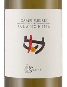 Vini Bianchi - Campi Flegrei Falanghina DOC 2017 (750 ml.) - La Sibilla - La Sibilla - 2