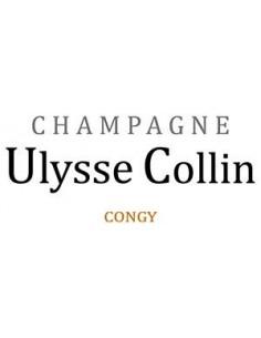 Champagne AOC Extra Brut Blanc de Noirs 'Les Maillons' - Ulysse Collin