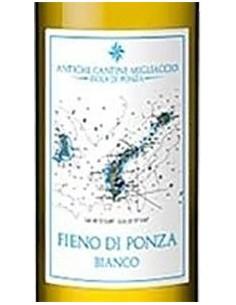 White Wines - Lazio Bianco IGT 'Fieno di Ponza' 2017 (750 ml.) - Antiche Cantine Migliaccio - Antiche Cantine Migliaccio - 2