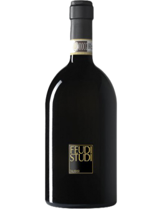 Vini Rossi - Taurasi DOCG 'Candriano' FeudiStudi 2011 (750 ml.) - Feudi di San Gregorio - Feudi di San Gregorio - 1