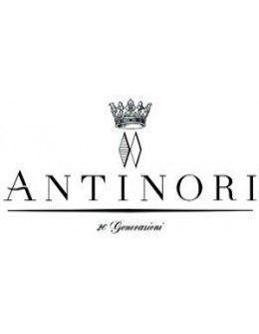 Red Wines - Chianti Classico Gran Selezione DOCG 'Badia a Passignano' 2017 (750 ml.) - Antinori - Antinori - 3