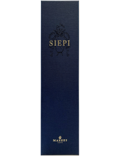 Red Wines - Toscana Rosso IGT 'Siepi' 2017 (750 ml. boxed) - Mazzei - Mazzei - 4