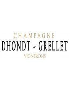 Champagne Blanc de Noirs - Champagne Extra Brut 'Dans Un Premier Temps' (750 ml.) - Dhondt Grellet - Dhondt Grellet - 3