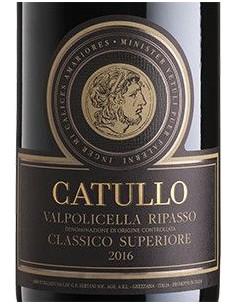 Red Wines - Valpolicella Ripasso Classico Superiore DOC 'Catullo' 2017 (750 ml.) - Bertani - Bertani - 2