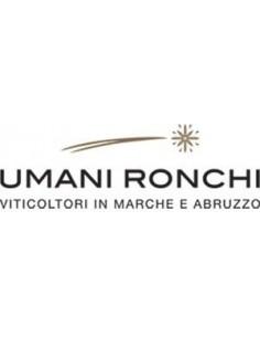 Vini Bianchi - Verdicchio dei Castelli di Jesi Riserva DOC 'Plenio' 2017 (750 ml.) - Umani Ronchi - Umani Ronchi - 3