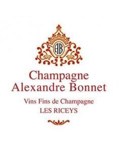 Champagne Blanc de Noirs - Champagne Brut Blanc de Noirs (750 ml.) - Alexandre Bonnet - Alexandre Bonnet - 3