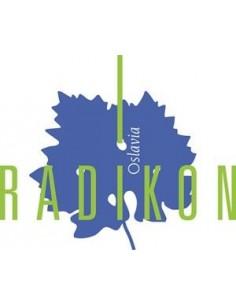 Orange Wine - Venezia Giulia Ribolla Gialla IGT 2016 (500 ml) - Radikon - Radikon - 3