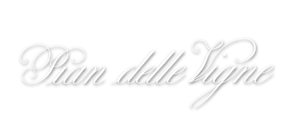 pian_logo.png