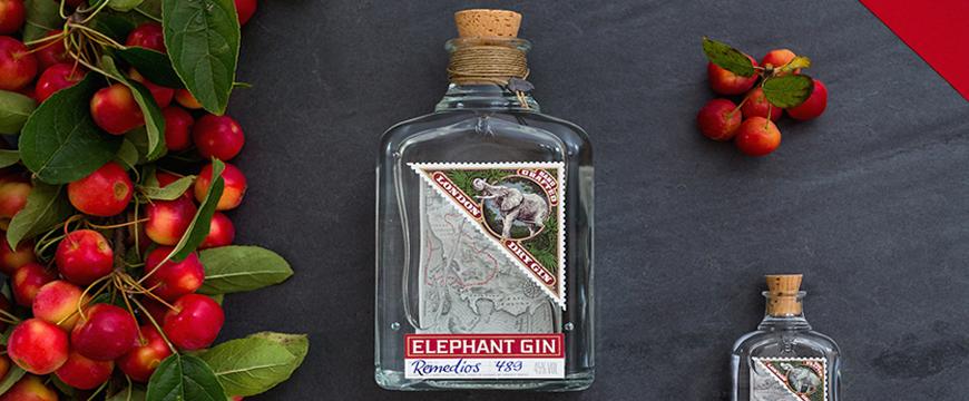 elephant_870x360.jpg