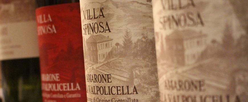 Villa-Spinosa_870x360.jpg